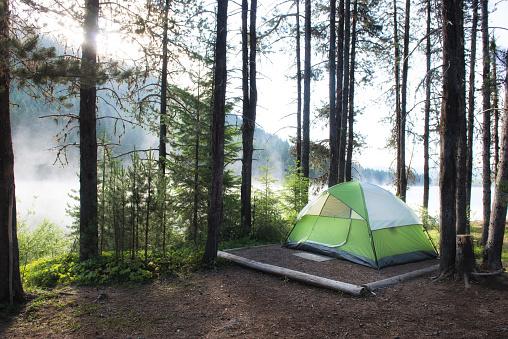 Umpqua National Forest「Tent on a campsite by Lemolo Lake in morning mist, Umpqua National Forest, Oregon, USA」:スマホ壁紙(0)