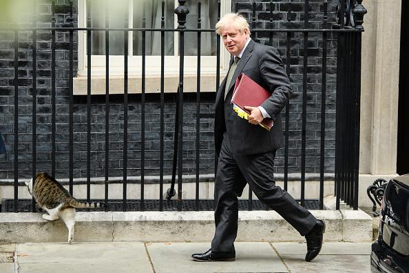 Tabby Cat「Boris Johnson Leaves For PMQs」:写真・画像(0)[壁紙.com]