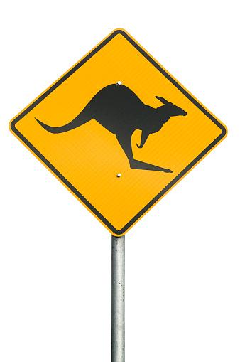 カンガルー「カンガルー警告標識」:スマホ壁紙(17)