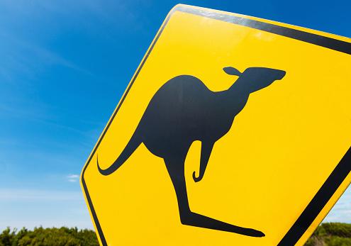 カンガルー「オーストラリアのアウトバック カンガルー警告サイン」:スマホ壁紙(4)