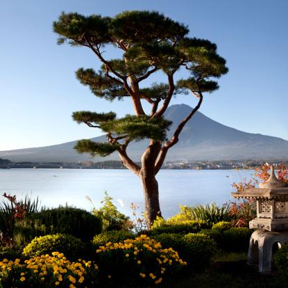 Lake Kawaguchiko「Garden and Lake Kawaguchiko with Mt. Fuji」:スマホ壁紙(10)