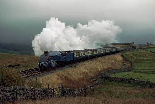 Animal Body Part「The Aire - Eden Limited. No.4498 Sir Nigel Gresley approaches Ais Gill summit from the south. 21.10.1978.」:写真・画像(16)[壁紙.com]