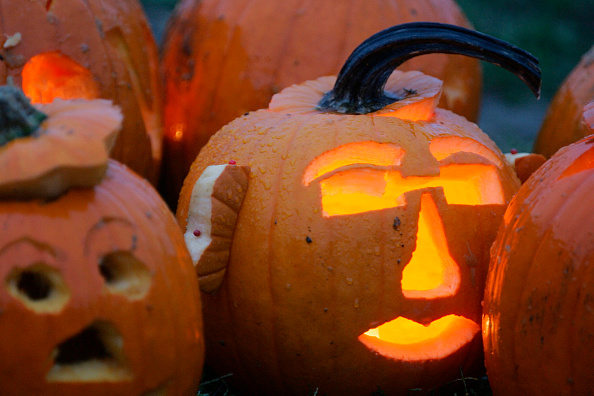 Carving - Craft Product「Boston Holds Pumpkin Festival」:写真・画像(1)[壁紙.com]