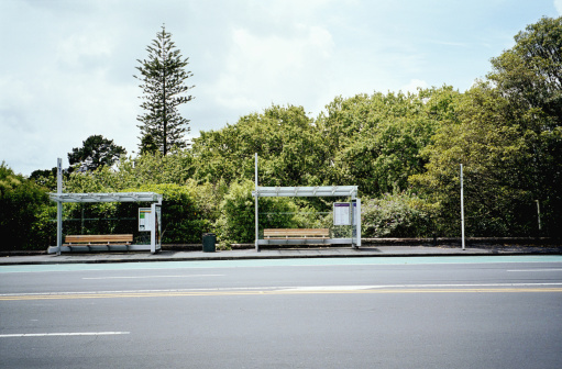 North Island New Zealand「Two bus stop stands」:スマホ壁紙(17)