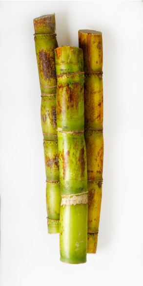 Sugar Cane「Sugar cane on white」:スマホ壁紙(12)