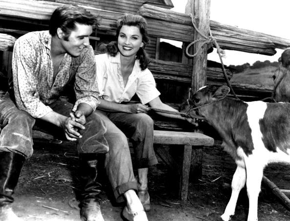 Love - Emotion「Trooper dusk, LOVE ME TENDER, of ROBERTWEBB with Elvis Presley and Deborah Paget 1956」:写真・画像(19)[壁紙.com]