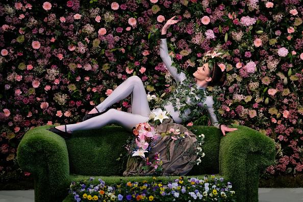 ベストオブ「Staging Day At The Harrogate Spring Flower Show」:写真・画像(0)[壁紙.com]