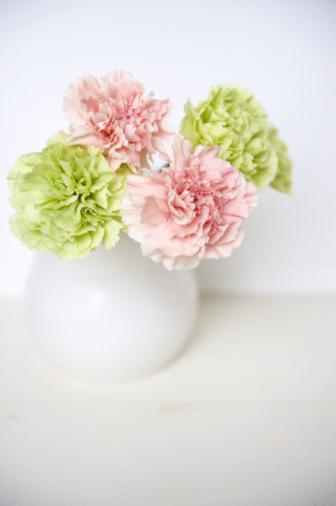 カーネーション「Carnation flower and vase」:スマホ壁紙(4)
