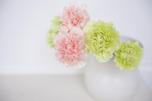 カーネーション「Carnation flower and vase」:スマホ壁紙(3)