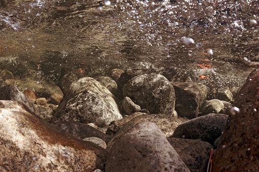 アディロンダック森林保護区「Adirondack Underwater Riverscape」:スマホ壁紙(19)