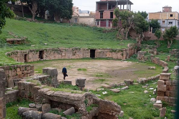 Grass「Algeria」:写真・画像(15)[壁紙.com]