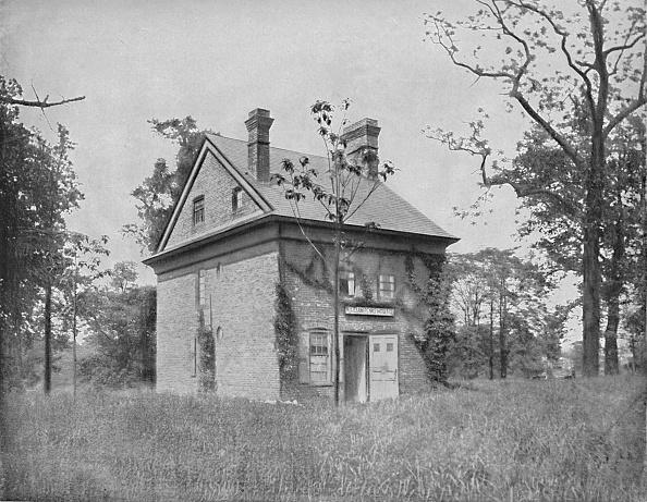 Grass Family「Penn House」:写真・画像(14)[壁紙.com]