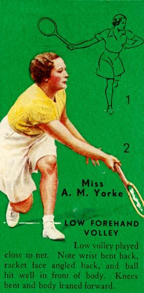 スポーツ用品「Miss A M Yorke - Low Forehand Volley」:写真・画像(9)[壁紙.com]