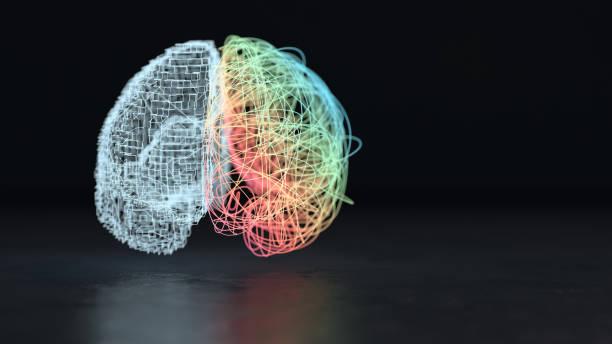 Left and right brain hemisphere:スマホ壁紙(壁紙.com)