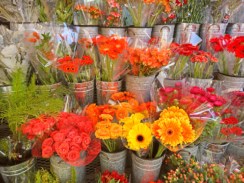 Flower Shop「Flower market display of a variety of multi colored blooming flowers in individual containers.」:スマホ壁紙(17)
