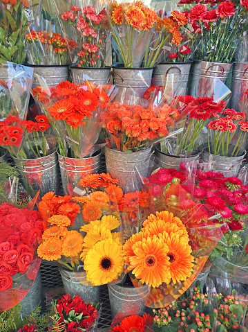 Flower Shop「Flower market display of a variety of multi colored blooming flowers in individual containers.」:スマホ壁紙(19)