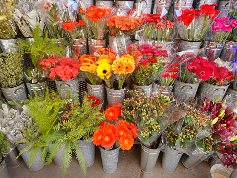 Flower Shop「Flower market display of a variety of multi colored blooming flowers in individual containers.」:スマホ壁紙(16)