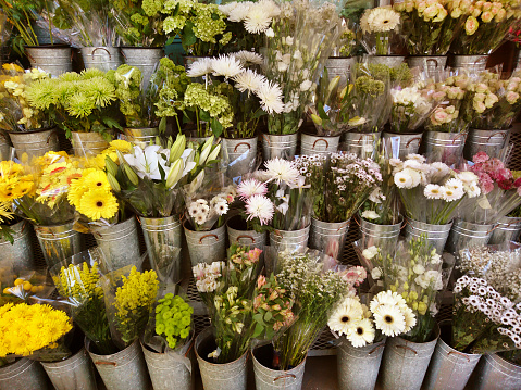 Flower Shop「Flower market display of a variety of multi colored blooming flowers in individual containers.」:スマホ壁紙(18)