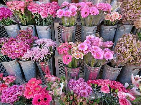 Flower Shop「Flower market display of a variety of multi colored blooming flowers in individual containers.」:スマホ壁紙(12)