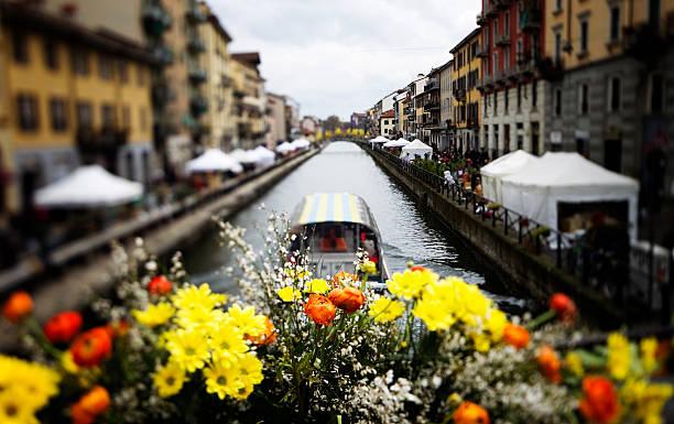 Flower Market - Milano. Color Image:スマホ壁紙(壁紙.com)