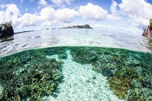 Shallow「A beautiful coral reef grows near a set of limestone islands.」:スマホ壁紙(7)