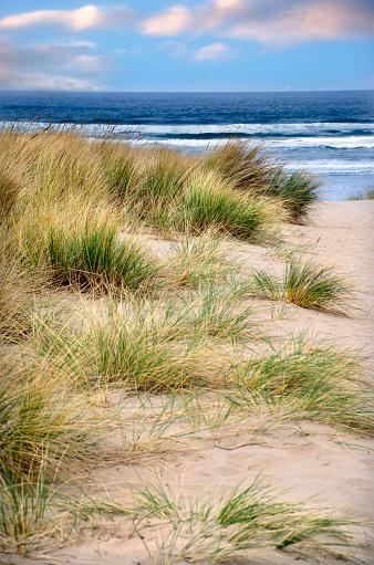 Cannon Beach「Beautiful Cannon Beach Coastline」:スマホ壁紙(9)