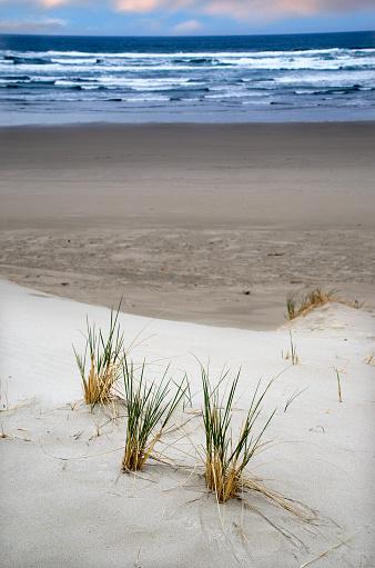 Cannon Beach「Beautiful Cannon Beach Coastline」:スマホ壁紙(2)