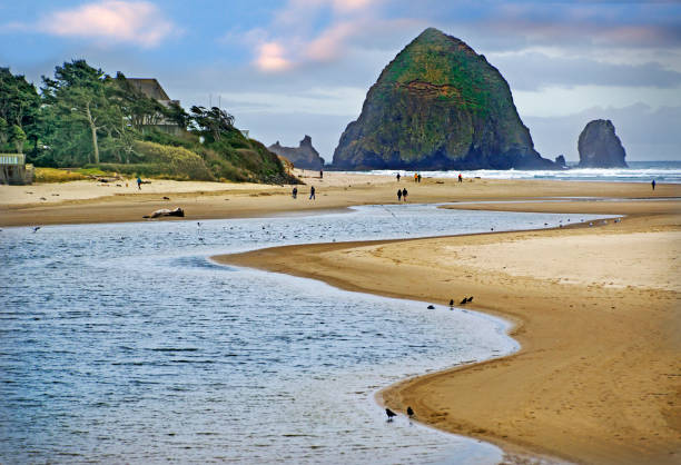 Beautiful Cannon Beach Coastline:スマホ壁紙(壁紙.com)