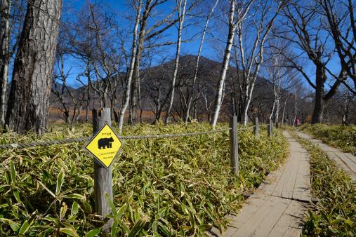 Nikko City「Senjougahara Plateau」:スマホ壁紙(13)