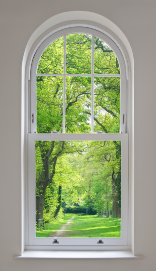 Sash Window「white arched window and parkland view」:スマホ壁紙(8)