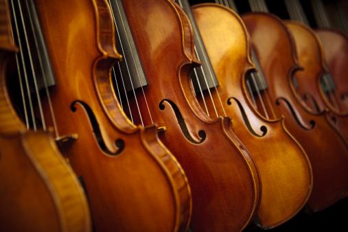 String Instrument「Rows of violins」:スマホ壁紙(9)