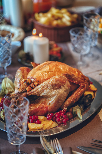 Stuffed Turkey「Family Having Traditional Holiday Stuffed Turkey Dinner」:スマホ壁紙(6)