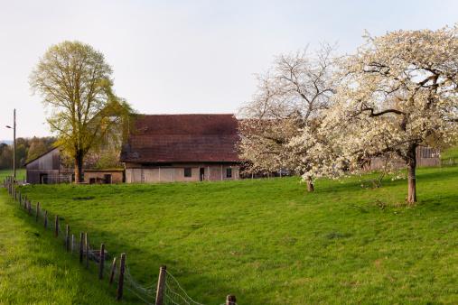 Vaud Canton「Farmhouse, late afternoon in spring, Vaud, Switzerland」:スマホ壁紙(1)