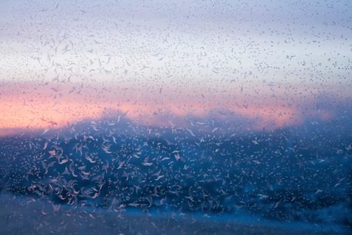 Frost「Winter morning」:スマホ壁紙(18)