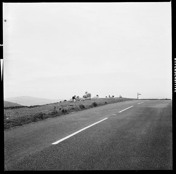 Road Marking「B3212 Road」:写真・画像(1)[壁紙.com]
