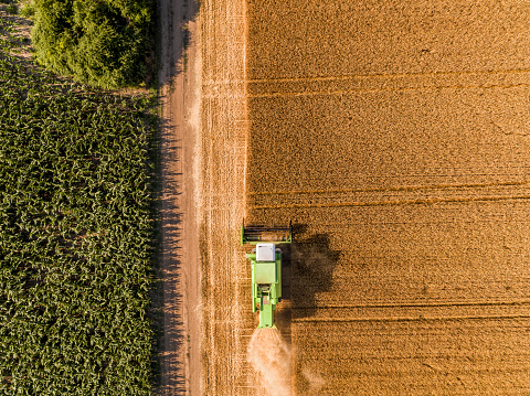 Combine Harvester「Serbia, Vojvodina. Combine harvester on a field of wheat, aerial view」:スマホ壁紙(4)