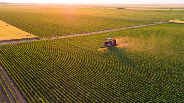 Serbia, Vojvodina, Aerial view of a tractor spraying soybean crops:スマホ壁紙(壁紙.com)