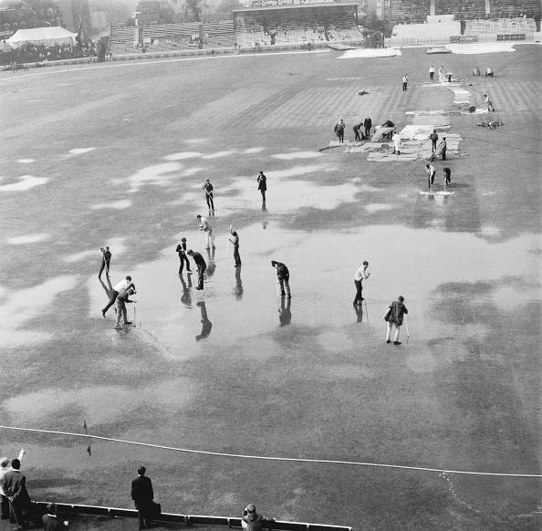 Mop「Waterlogged Oval」:写真・画像(16)[壁紙.com]