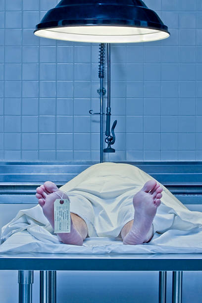 Corpse on examination table with toe tag:スマホ壁紙(壁紙.com)