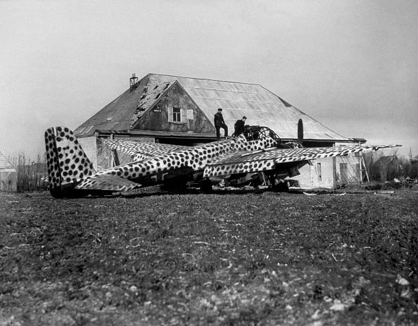 Netherlands「Camouflaged Plane」:写真・画像(5)[壁紙.com]