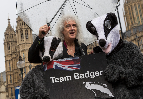 Brian May「Celebrities Protest At Planned Badger Cull」:写真・画像(8)[壁紙.com]
