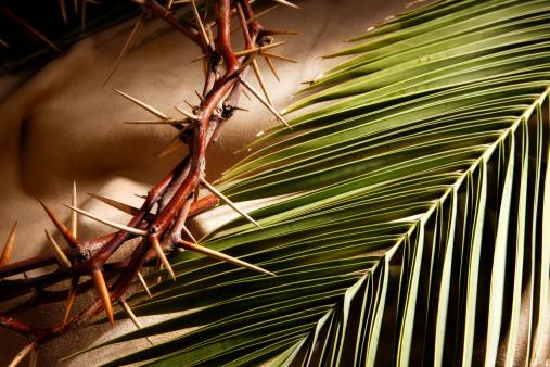 Frond「Good Friday and Palm Sunday」:スマホ壁紙(3)