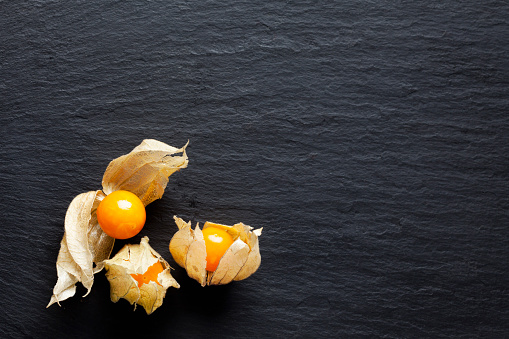 Winter Cherry「Three Physalis on slate」:スマホ壁紙(18)
