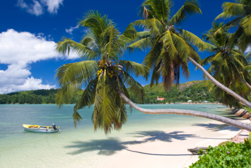 Moored「Palm-lined bay, Baie Ste Anne, Praslin, Seychelles」:スマホ壁紙(14)