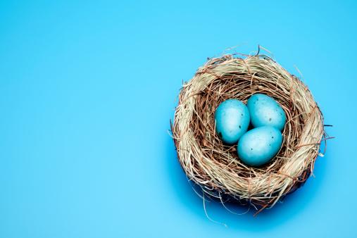 鳥の巣「ブルーイースター卵」:スマホ壁紙(2)