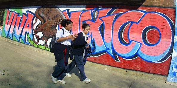 Teenager「Hispanic Communities in Chicago」:写真・画像(8)[壁紙.com]