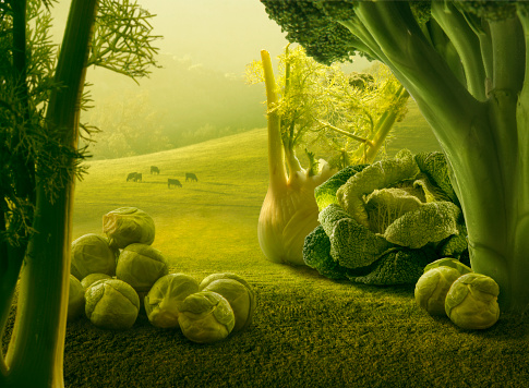 Vegetarian Food「Surreal giant green vegetables in sunset field」:スマホ壁紙(15)
