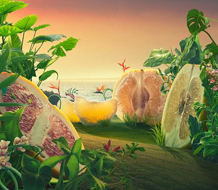 Fairy tale「Surreal giant grapefruits on a field」:スマホ壁紙(19)