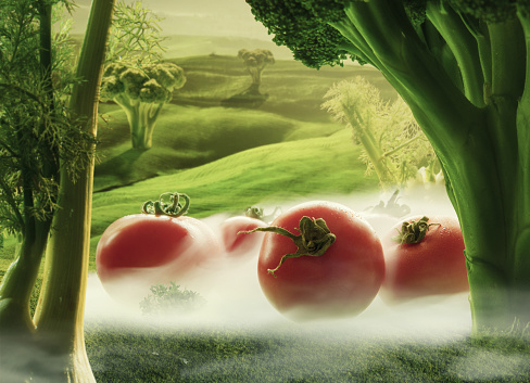 Fennel「Surreal giant tomatos with broccoli and fennel in green field with fog」:スマホ壁紙(8)