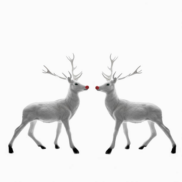 Red Nosed Reindeer facing each other:スマホ壁紙(壁紙.com)